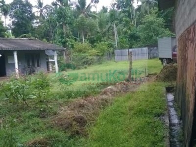 A Complete Rubber Factory For Sale