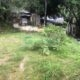 Land for sale in Mulgampola