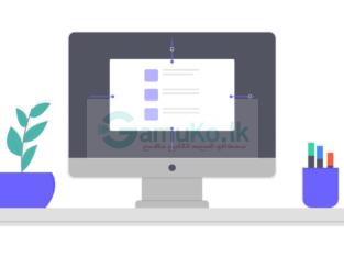 Professional Web Designing Services   Gampaha