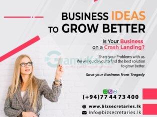 Business Advisory Services   Bizsecretaries