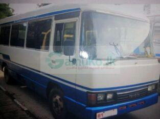 Coaster (Omini bus)