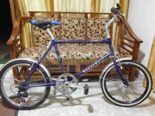 Bianchi Merlo Mini Italy Bicycle For Sale