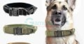 Dog Collar (Red Color)