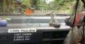 Isuzu Gemini car